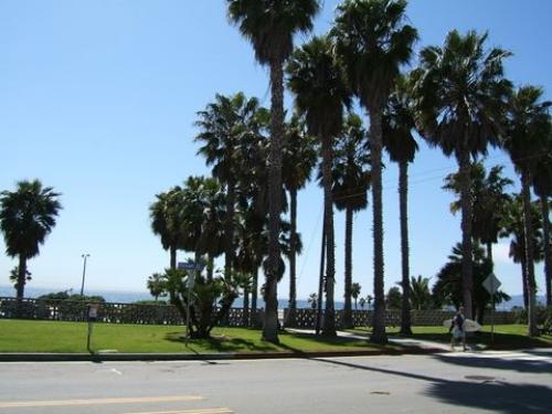 image 2 unfurnished Studio bedroom Apartment for rent in Santa Monica, West Los Angeles